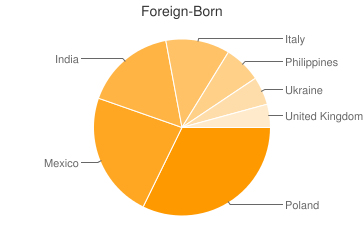 Most Common Foreign Birthplaces in Itasca