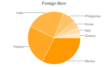 Most Common Foreign Birthplaces in Des Plaines