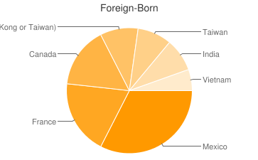 Most Common Foreign Birthplaces in78733