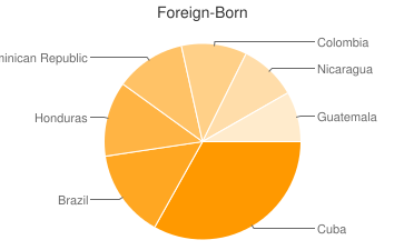 Most Common Foreign Birthplaces in33132