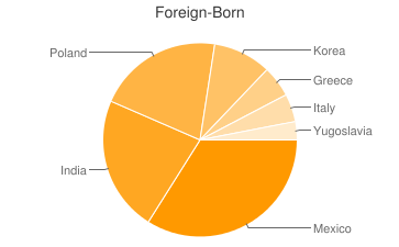 Most Common Foreign Birthplaces in Mount Prospect