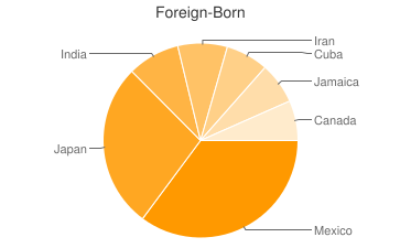 Most Common Foreign Birthplaces in35603