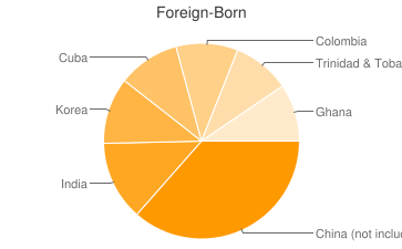 Most Common Foreign Birthplaces in30313