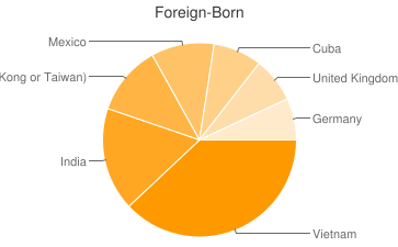 Most Common Foreign Birthplaces in Baton Rouge