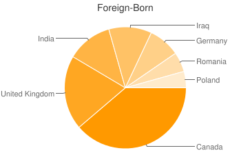 Most Common Foreign Birthplaces in Royal Oak