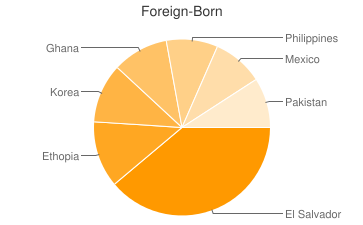 Most Common Foreign Birthplaces in Alexandria