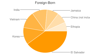 Most Common Foreign Birthplaces in Silver Spring