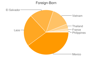 Most Common Foreign Birthplaces in72904