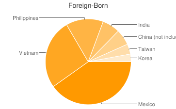 Most Common Foreign Birthplaces in San Jose