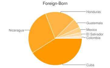 Most Common Foreign Birthplaces in33128