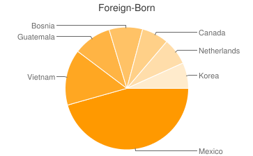 Most Common Foreign Birthplaces in Grand Rapids