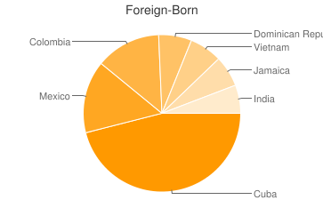 Most Common Foreign Birthplaces in Tampa