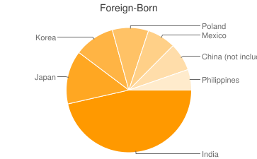 Most Common Foreign Birthplaces in60173