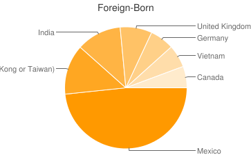 Most Common Foreign Birthplaces in Birmingham