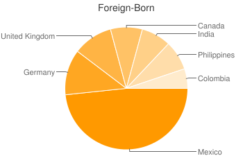 Most Common Foreign Birthplaces in South Carolina