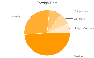 Most Common Foreign Birthplaces in Kirkland