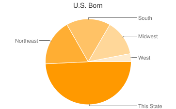 Most Common US Birthplaces in Tampa