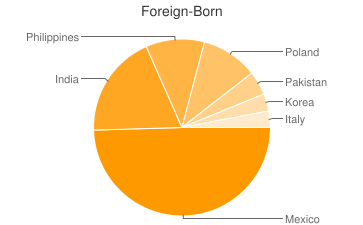 Most Common Foreign Birthplaces in Bartlett