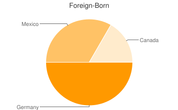 Most Common Foreign Birthplaces in Jerome