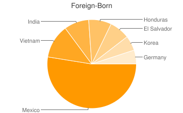 Most Common Foreign Birthplaces in Charlotte