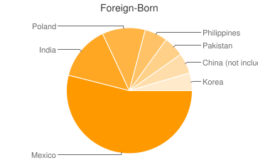 Most Common Foreign Birthplaces in Palatine