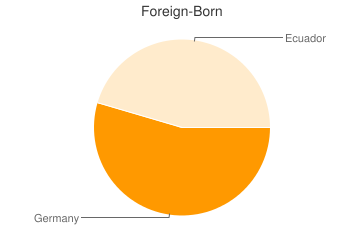 Most Common Foreign Birthplaces in Rudy