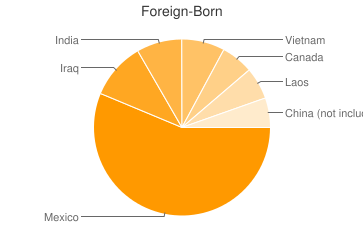 Most Common Foreign Birthplaces in Nashville