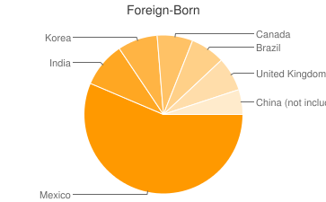 Most Common Foreign Birthplaces in Marietta