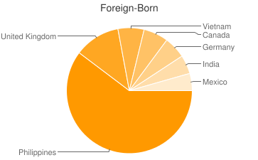 Most Common Foreign Birthplaces in Virginia Beach