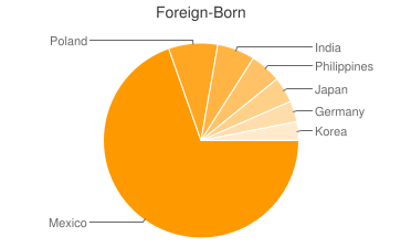 Most Common Foreign Birthplaces in Rolling Meadows