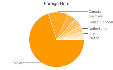 Most Common Foreign Birthplaces in86314