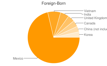 Most Common Foreign Birthplaces in Tulsa