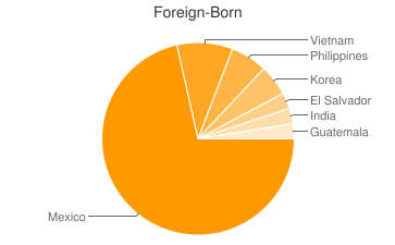 Most Common Foreign Birthplaces in Anaheim