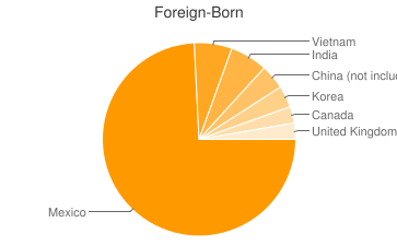 Most Common Foreign Birthplaces in Austin