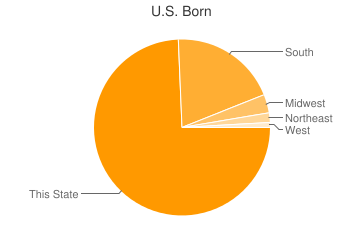 Most Common US Birthplaces in Detroit