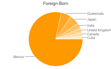Most Common Foreign Birthplaces in Decatur