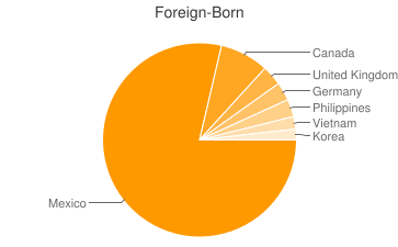 Most Common Foreign Birthplaces in Mesa