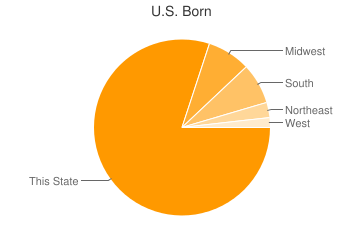 Most Common US Birthplaces in Michigan