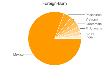 Most Common Foreign Birthplaces in Riverside
