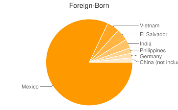 Most Common Foreign Birthplaces in Texas