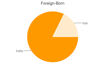 Most Common Foreign Birthplaces in Jamestown