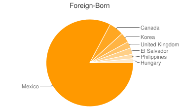 Most Common Foreign Birthplaces in Desert Hot Springs
