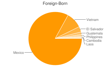 Most Common Foreign Birthplaces in Santa Ana