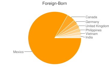 Most Common Foreign Birthplaces in Arizona