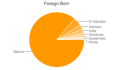 Most Common Foreign Birthplaces in Dallas
