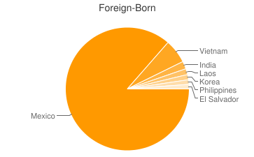 Most Common Foreign Birthplaces in Fort Worth