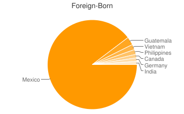 Most Common Foreign Birthplaces in92025