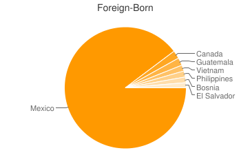 Most Common Foreign Birthplaces in Phoenix