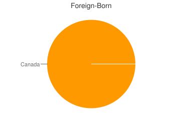 Most Common Foreign Birthplaces in04237