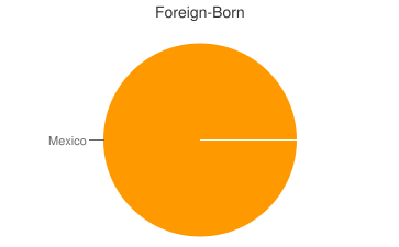 Most Common Foreign Birthplaces in North Palm Springs